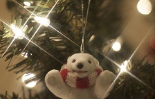 christmas happy bear